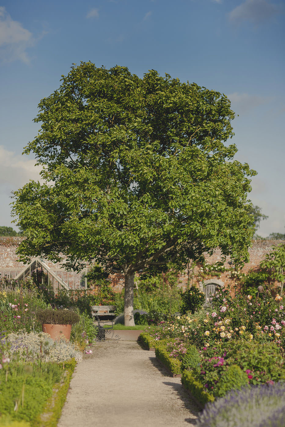 chrissarah walled garden midhurst wedding photographer 0109
